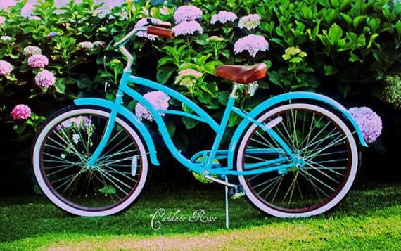 Turquoise Beach Cruiser Amongst The Hydrangeas - 5 x 7 Photography Print