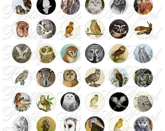 Owls - One Inch Circles - INSTANT DOWNLOAD - For Pendants Magnets - Crafts - Digital Collage Sheet
