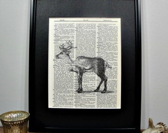 FRAMED Vintage Dictionary Print - Woodland Series - Whitetail Deer