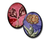 Eclectic Garden - 40x30mm ovals - (2) Digital collage sheets