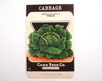 Vintage 1920s Unused Paper Seed Packet Cabbage