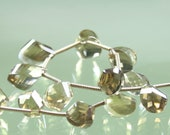 AA Twisted Step Faceted Beer Quartz Briolettes