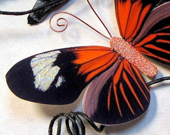 Butterfly Embellishments Haunted Wings