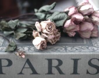 Paris Photography, Paris Book Photo, Paris Roses Decor, Paris Shabby Chic Decor, Paris Books Wall Art Prints, Paris Roses, Paris Books Print