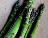 SALE Asparagus Season 8x10 print