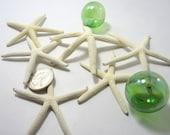 "Beach Decor Small White Starfish  - Nautical Decor White Starfish, 2-3""  for Beach Weddings or Crafts, 12PC"