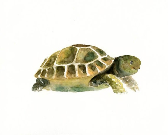 TORTOISE Original watercolor painting 10X8inch