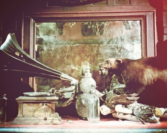 "Oddities Photograph ""Carnival Saloon"" Cabinet of Curiosity Fine Art Print"