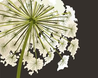 Queen Anne's Lace ( 8x10 Botanical Art Print)