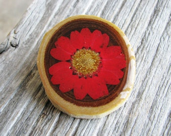 Red Daisy Brooch Pressed Flower Red Real Daisy Resin Wood Pendant Nature Inspired Jewelry Naturalist Garden Chic Botanical Jewelry