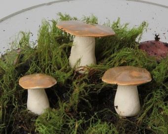 Tiny Oyster Mushrooms - Porcelain Sculpture