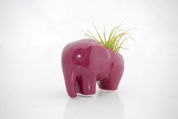Elephant planter, elephant air plant holder, ceramic unique air plant pod in purple