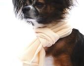 Dog Scarf- Special Occasion Cream Scarf- Dressy