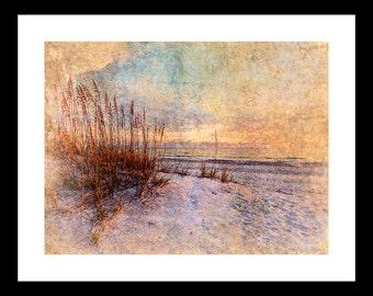 Sea Oats 12X16 Fine Art Print