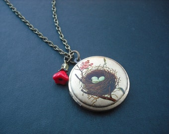 SALE - bird nest altered photo locket necklace version 1 - only one available