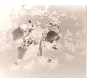 Children Feeding Pigeons Artsy Vintage 8 X 10 Black and White Photograph Picture