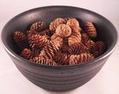 Pine cone bowl fillers....