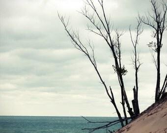 Beach Photograph dunes water blue teal sand tree summer Lake Michigan Warren Dunes 8x10