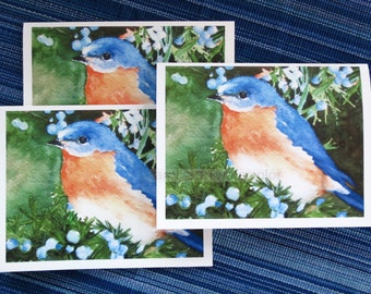 bluebird blank cards set of three watercolor