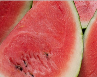 Melon, Organic Sugar Baby Watermelon Seeds - Sweet Red Flesh Incredibly Delicious and Juicy Home Grown Melons