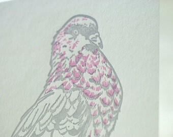 SALE - Letterpress King Pigeon card