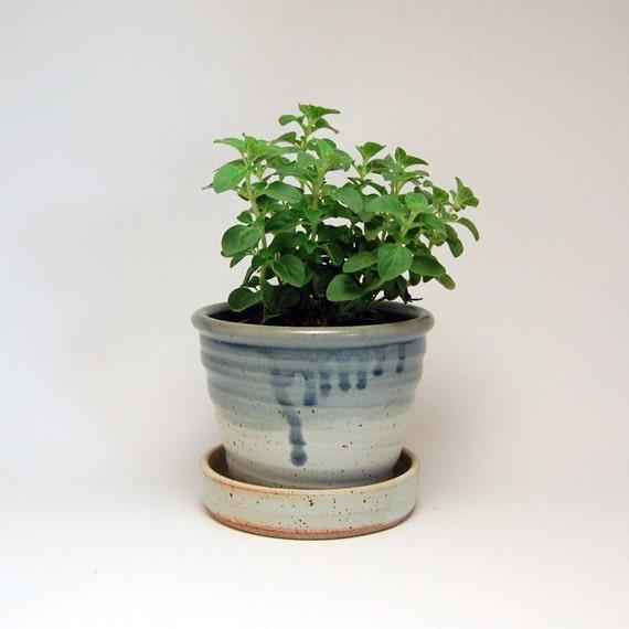 Ceramic Flower Pot - Planter - Great for an Herb Garden