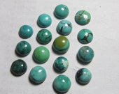 7 - 8 mm Gorgeous AAA - High Quality Natural - TIBETIAN TOURQUISE - Old Looking Round Cabochon - 16 pcs
