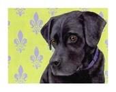 Black Lab Magnet - Labrador Retriever Magnet - Lab Art - Dog Art - 10% Benefits Animal Rescue