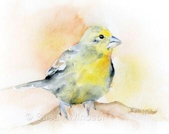 Goldfinch Bird Watercolor Print 5 x 7