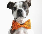 SALE Halloween Spider Web Dog Bow tie - Handmade Dog Collar Accessories - Regular and Large Sizes