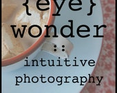 photography e-course   (eye) wonder : intuitive photography for everyday people
