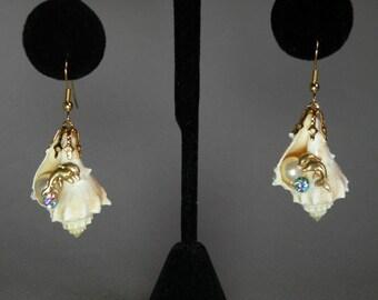 Dolphin & Seashell Earings