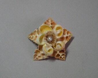 Vintage Seashell Star Brooch
