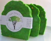 Eucalyptus-Tea Tree Oil All Natural Cold Process Hand MIlled Large Soap Bar