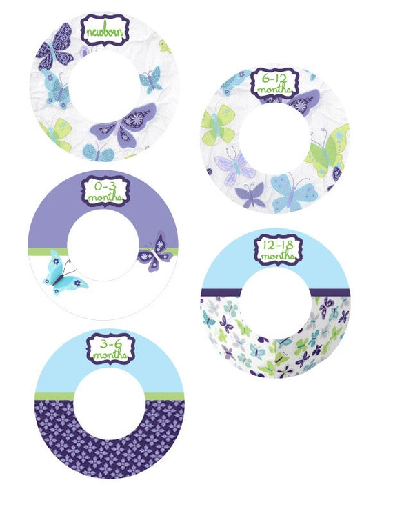 beautiful butterfly closet dividers