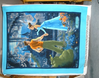 Princess Tiana Fleece Blanket - single or double layers - custom made