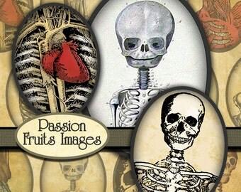 Old Bones halloween digital collage sheet-  30mm x 40mm ovals-- Instant Download