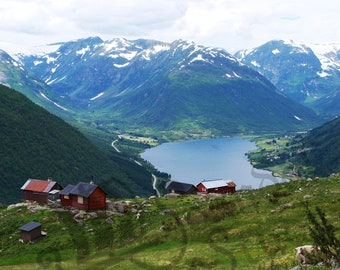 Breathtaking Landscape Photograph in Western Norway- A Charming Scene of the Mountains, Valley, Lake and cheeky sheep