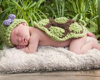 Turtle Photo Prop-Baby Turtle Set