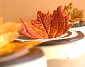 Edible PETITE Sugar Fall Leaves 2 dozen -Thanksgiving, Harvest Festival, Winter and Autumn Events