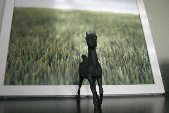 The Original Chalkboard Horse - Gloss