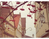 Red Berries, winter, German Christmas, Old Town, Christmas lights, star, Germany Photography, 10x14 Original Fine Art Photograph