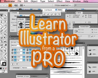 Learn ILLUSTRATOR from a PRO - half an hour lesson on Skype with an Illustrator instructor