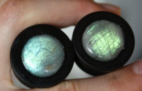 """1"""" Ebony and Labradorite Inlay Plugs"""