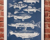 Fresh Water Fish Print Slate