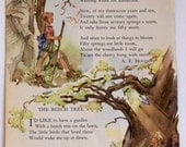 Vintage Children's Book  Tree illustration  with poem by A. E. Housman