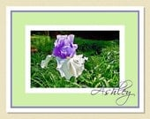 Enchanting Iris - Personalized Note Cards (10 Folded)
