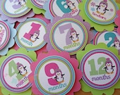 Colorful Penguin Winter ONEderland: Monthly Tags Use for photo banners, scrapbooking