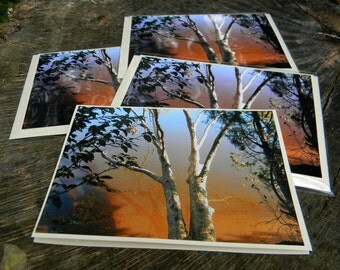 Photo note card blank greeting card nature inspired photo notecard set of 4 notecards