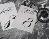Calligraphy / Swirl Font Table Numbers